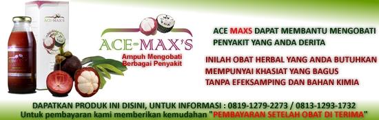 Banner-Ace-Maxs-Artikel2